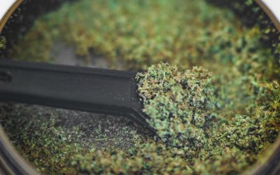 Kief – 5 Ways To Use It